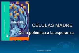 CELULAS MADRE.ppt