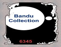Beyond The Reef - Instrument Gitar - Bandu Rz.mp3