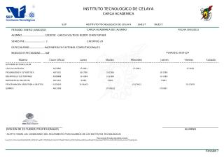 CargaAcademica - copia.pdf