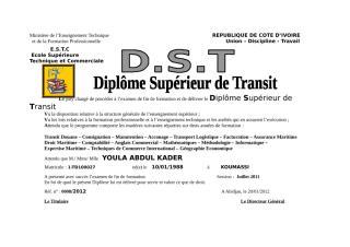 DST_YOULA.doc