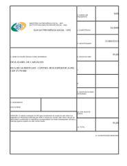 CARNE DE INSS 10-2009.docx